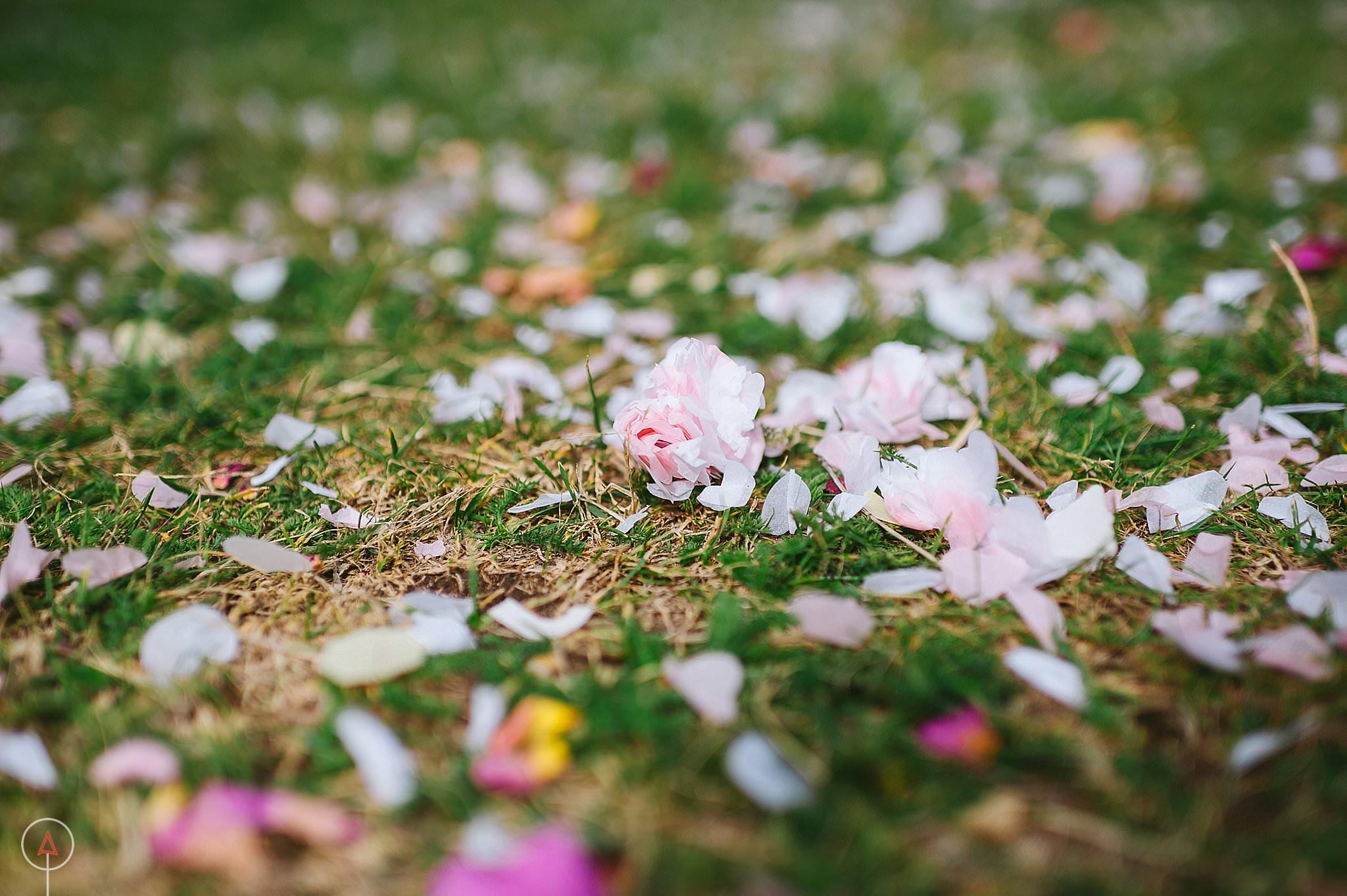 compton-verney-wedding-photographer-birmingham_1050