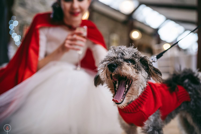 aga-tomaszek-wedding-photographer-cardiff_1131