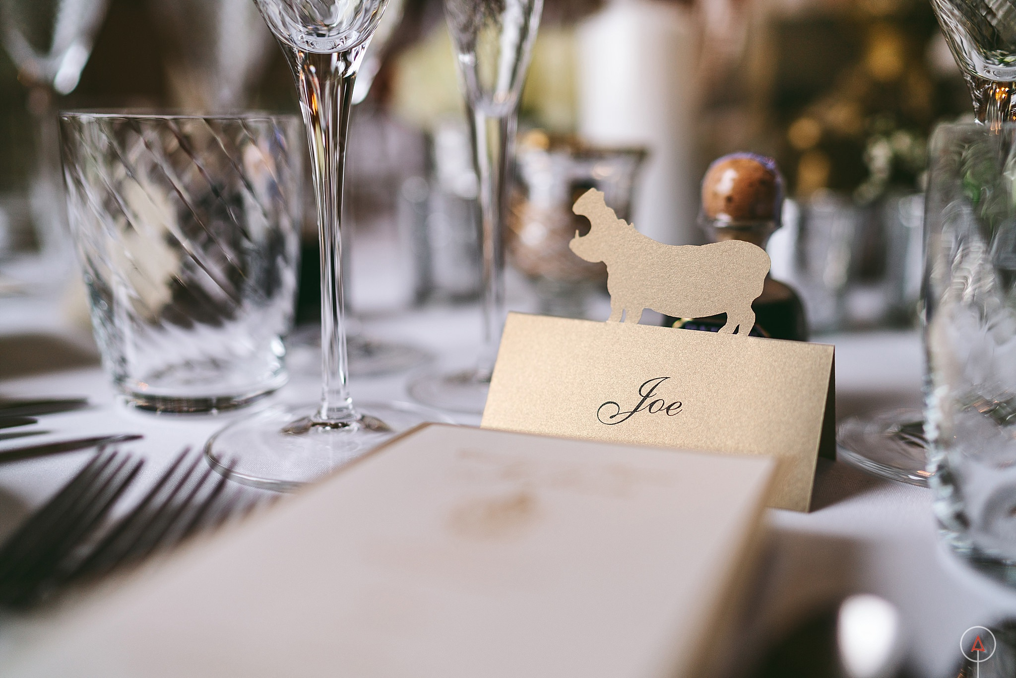 cardiff-wedding-photographer-aga-tomaszek_0286