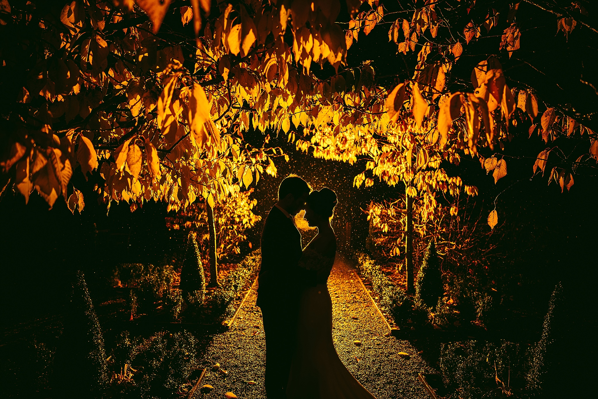aga-tomaszek-wedding-photographer-cardiff-2016_1119